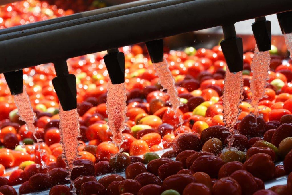 Lebensmittel- und Getränkeindustrie